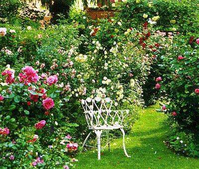 Тематические сады