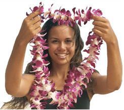 Гавайские праздники. Гавайская вечеринка. Гавайская магия. Гаваи ( кухня, танцы, мода ). - Страница 2 5