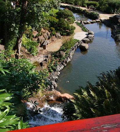 Японский сад кайзерслаутерн кусочек
