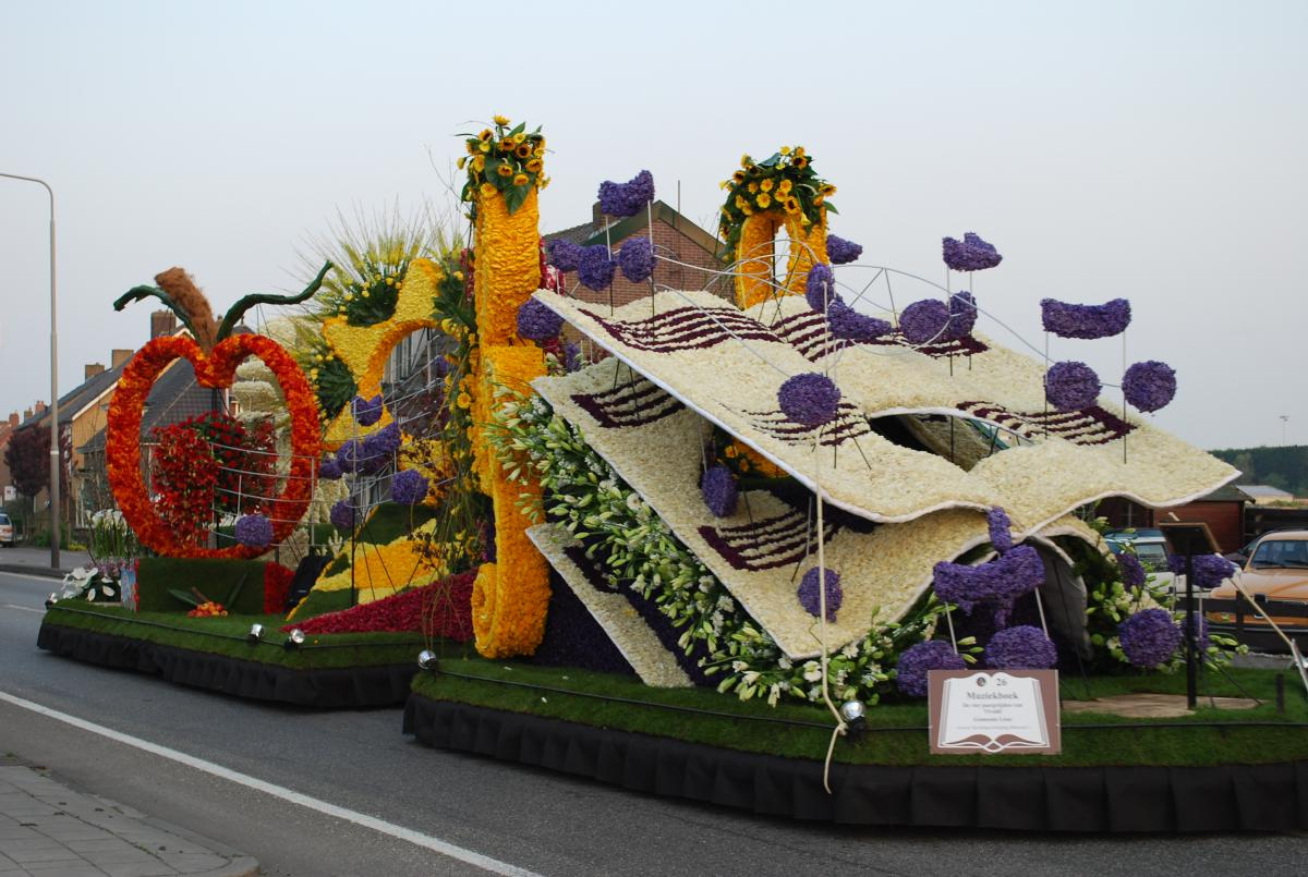 фото цветов голландских: