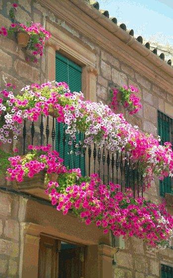 На северных и восточных балконах