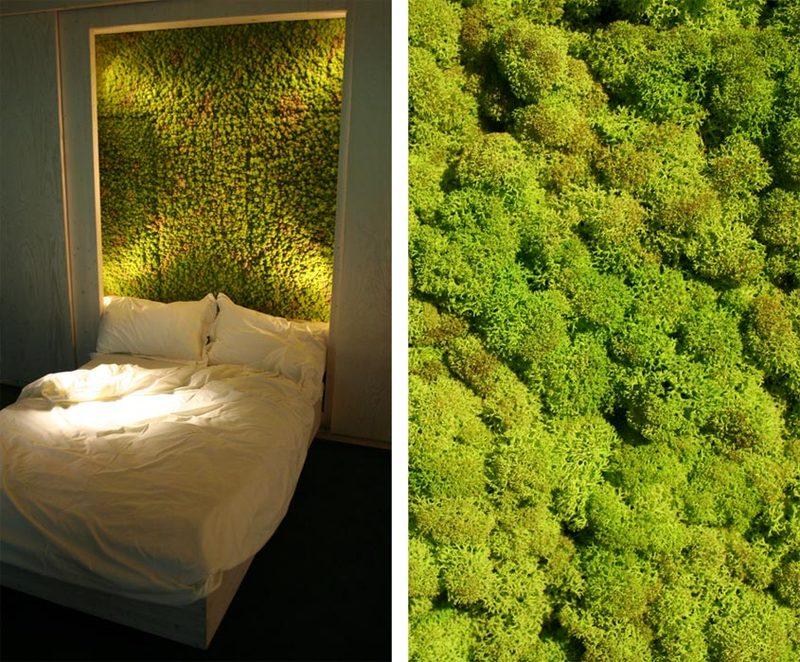 Зеленая стена в интерьере своими руками 86