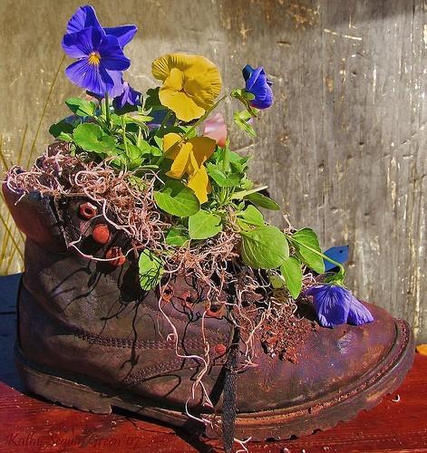 Кашпо для цветов из старой обуви!