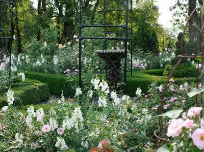 Высокий сад