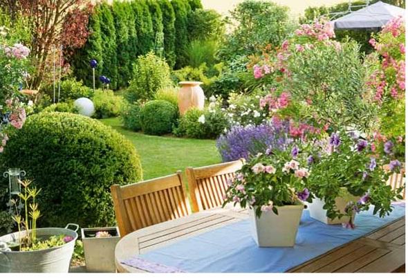 Садовая романтика в розовом цвете