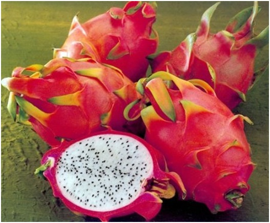 Продажа и доставка экзотических фруктов в Москве и