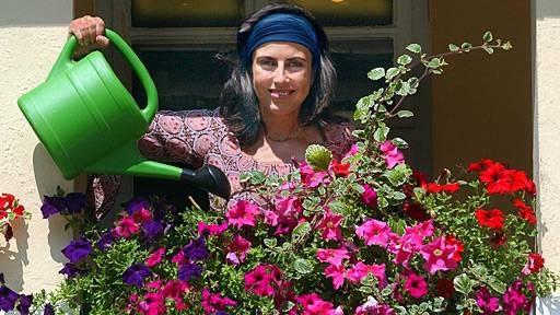 Как спасти сад от жары