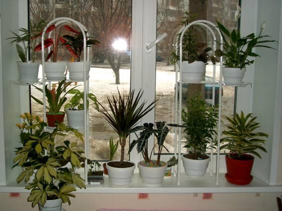Подставки для комнатных растений своими руками