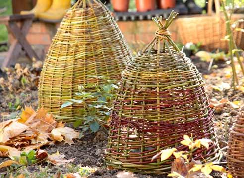 Картинки по запросу Корзина как зимнее укрытие для растений