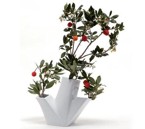 Современные вазы: дизайнерские работы