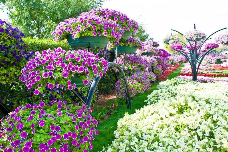 Деревянные горшки для цветов своими руками фото