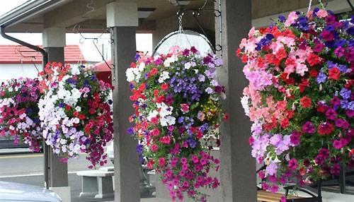 Подвесные корзины для цветов