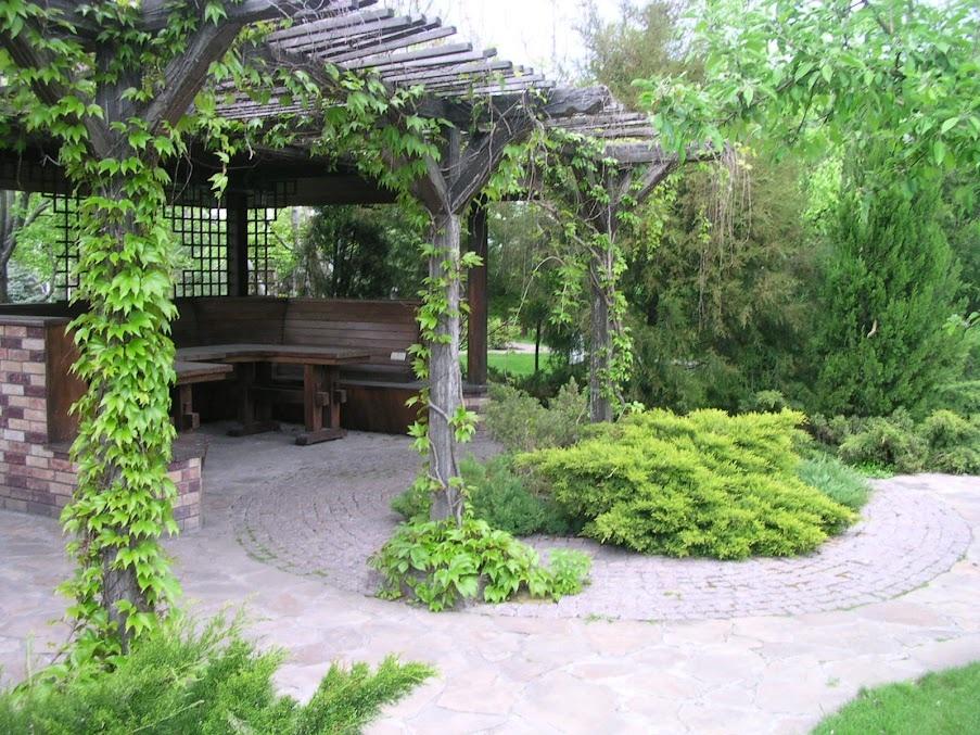 Как спланировать красивый сад у дома