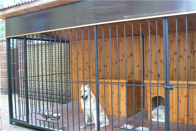 Как сделать вольер для двух собак своими руками