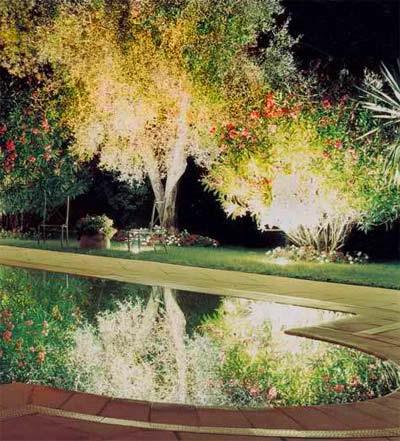 Освещение в ландшафтном дизайне, освещение водоема, подсветка деревьев.