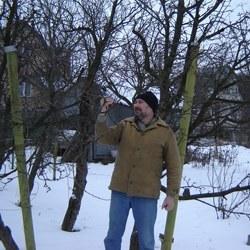 Обрезка плодовых  деревьев. Что надо знать, приступая к обрезке?