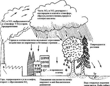 Кислотный дождь картинки