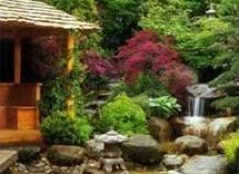Статьи › японский сад своими руками