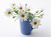 Цветы в вазе: как продлить им жизнь