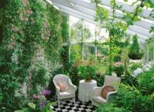 › зимний сад – уголок вечного лета