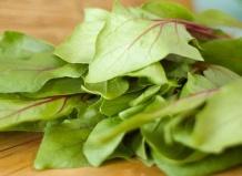 12 полезных растительных продуктов против болезней