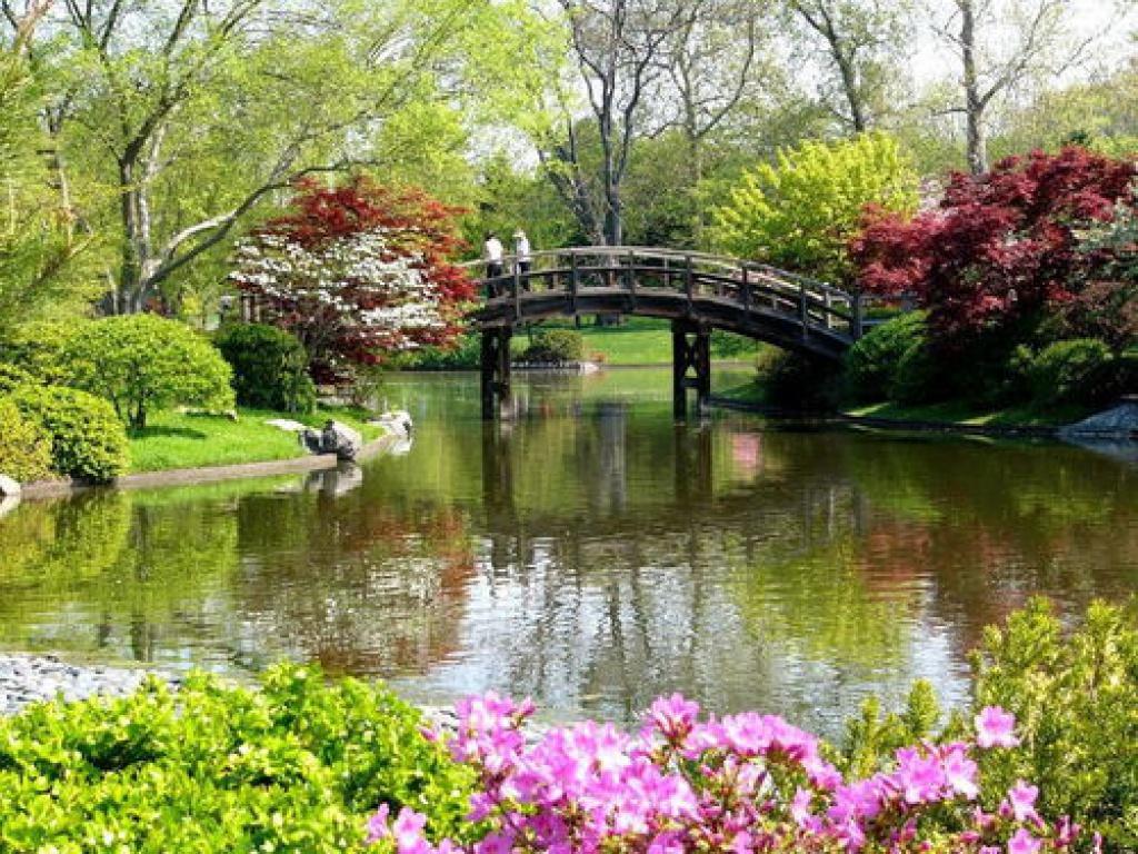 Abc76 tian - Fotos jardines japoneses ...