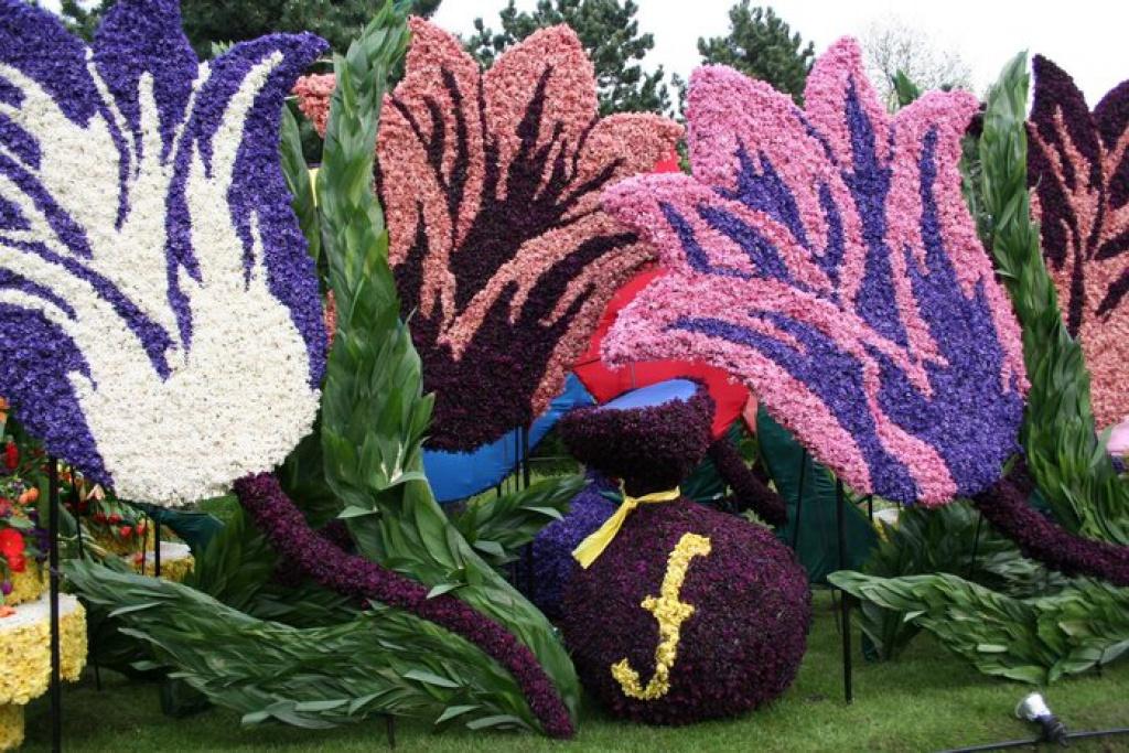 Фигуры из цветов картинки 1