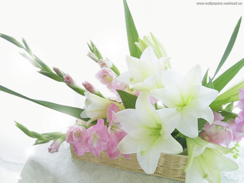 Картинки цветов с днем рождения 7