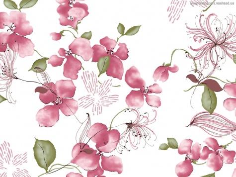 Красивые картинки рисованные цветы