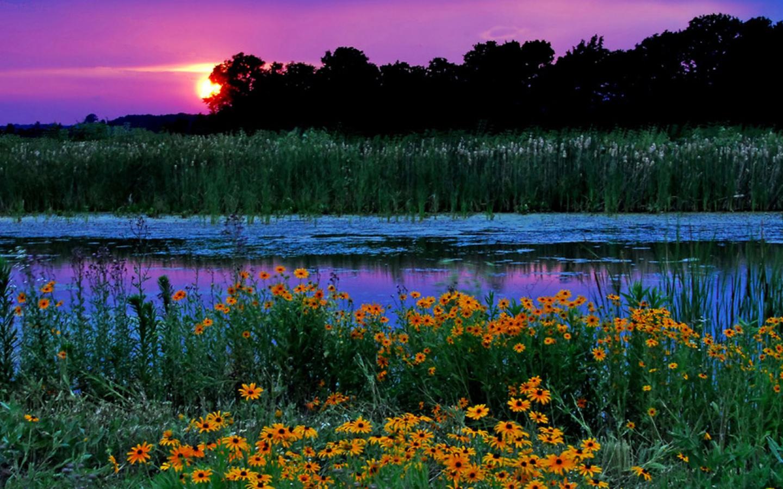 Хорошего вечера картинки 26 фотография