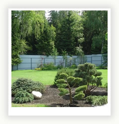 Хвойный сад Main_5