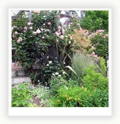 Садовый участок – связь поколений