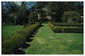 Огород по-итальянски