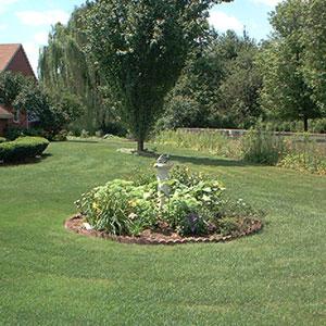 Как высоко следует стричь газон ?