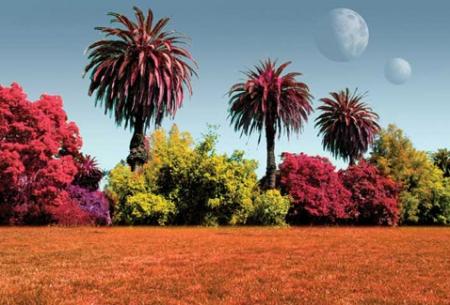 Внеземные растения встретят людей всеми цветами радуги