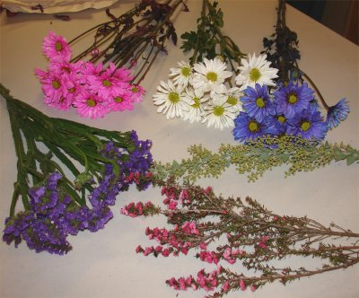 Засушивание цветов