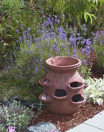 Как посадить растения в земляничный вазон